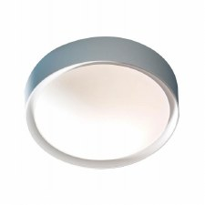 Beta Bathroom Flush Wall or Ceiling Light