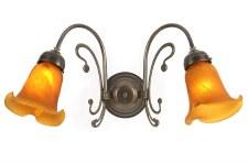 Er Art Nouveau Double Wall Light