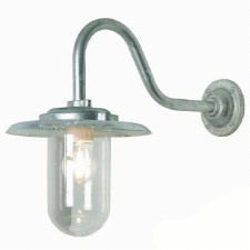 Swan Neck Outdoor Wall Light Clear Glass