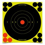 SHOOT-N-C Targets x 60
