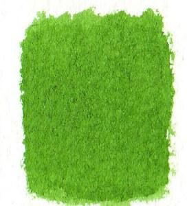 Dr. Ph. Martins Bombay India Ink 1oz Grass Green