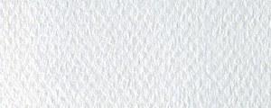 Mi-Teintes 335 White 8.5x11