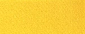 Mi-Teintes 400 Canary 8.5x11