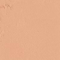 Gamblin Artist Oils Caucasian Flesh Tone 37ml