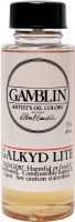 GAMBLIN 1980 OIL INTRODUCTORY