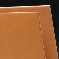 Canson Art Board Mi-Teintes Bisque 16x20