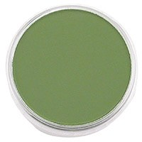 PANPASTEL 9ML CHROMIUM OXIDE GREEN