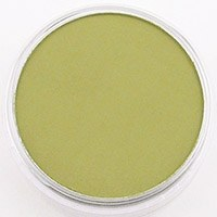 PANPASTEL BRIGHT YELLOW GREEN SHADE