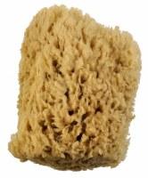 Royal Brush Wool Sponge, 5-6in.