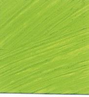 Williamsburg Handmade Oil Color 37ml Cadmium Green Light
