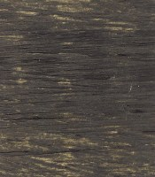 Williamsburg Handmade Oil Color 37ml Davy's Grey Deep