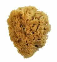 Royal Brush Wool Sponge, 4in