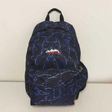 Ridge 53 'Morgan Rome' Childrens Schoolbag (Multi)