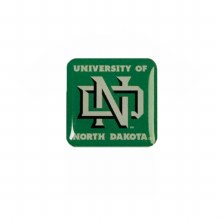 NEW ND LAPEL PIN