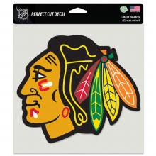 RETRO HAWKS 8 X 8 COLOR DECAL