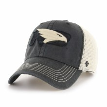 UNIVERSITY OF NORTH DAKOTA FIGHTING HAWKS SPRINGFIELD HAT