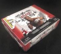 2010 LEAF MMA