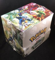 POKEMON CELESTIAL STORM THEMES