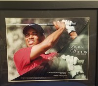 TIGER WOODS UDA GLOVE SWATCH