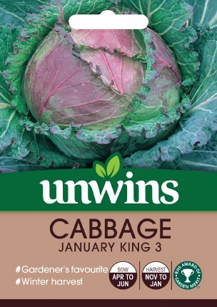 Cabbage (Round) January King 3