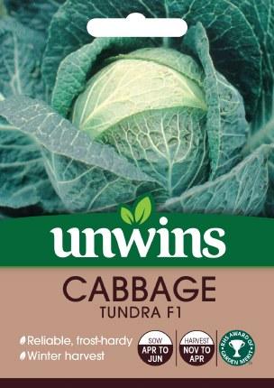 Cabbage (Round) Tundra F1