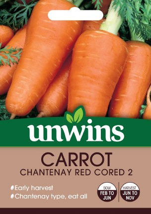 Carrot Chantenay Red Cored 2