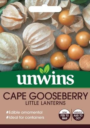 Cape Gooseberry Little Lanterns