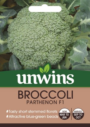 Broccoli (Calabrese) Parthenon
