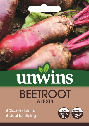 Beetroot (Long) Alexis