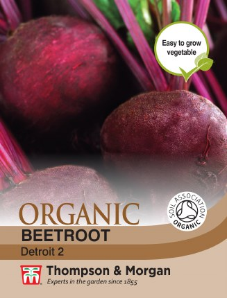 Beetroot Detroit 2 Organic