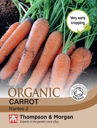 Carrot Nantes 2 Organic