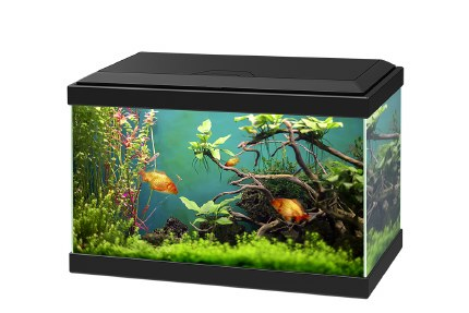 Ciano Aqua 20 Black With LED Lights & Filter