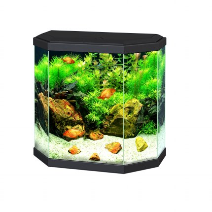 Ciano Aqua 30 Hex Black With LED Lights & Filter