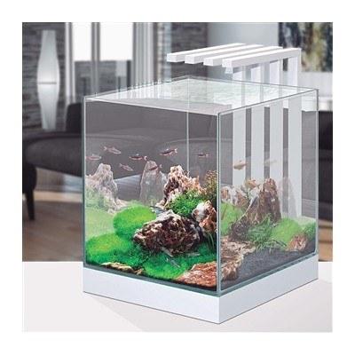 Ciano Nexus Pure 25 Aquariumm With LED Lights