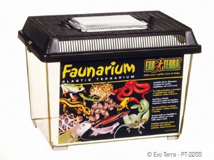 Exo Terra Faunarium Small 230x155x170mm