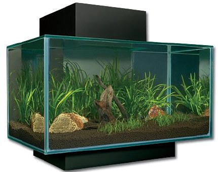 Fluval Edge 23 Litre Black - Special Offer