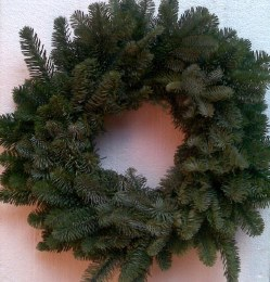 Pre-Order Fresh Noble Wreath Undecorated 18""