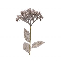 Champagne Coloured Hogweed Stem with Glitter 12 x 66cm