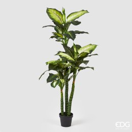 Artificial Diffenbacia plant  with green and white leaves 155cm