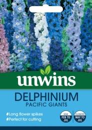 Delphinium Pacific Giants