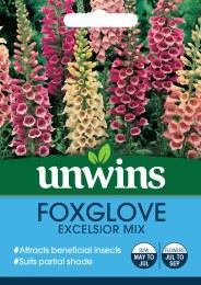 Foxglove Excelsior Mixed