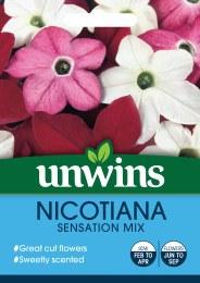 Nicotiana Sensation Mix