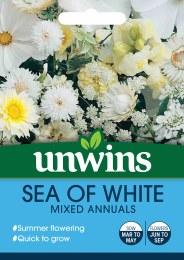 Unwins Sea Of White Annuals
