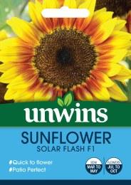 Sunflower Solar Flash F1