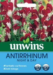 Antirrhinum Night & Day Online