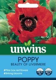 Poppy Beauty of Livermere