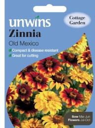 Zinnia Old Mexico