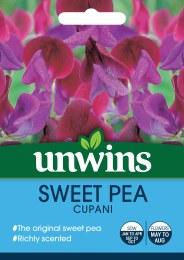 Sweet Pea Cupani