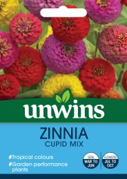 Zinnia Cupid Mix
