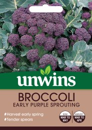 Broccoli (Sprouting) Early Purple Sprouting